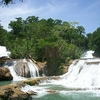 View Agua Azul Waterfalls In Chiapas