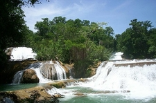 View Agua Azul Waterfalls In Chiapas