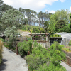 View Auckland Zoo - North Island NZ