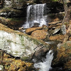 View B Reynolds Falls - Ricketts Glen State Park PA