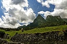 View Bucegi Park Area - Carpathians