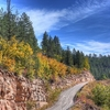 View Coconino Forest AZ