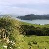 View Coromandel Peninsula In North Island NZ