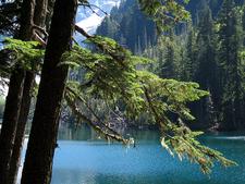 View Henry M Jackson Wilderness WA