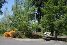 View Hillsboro Rood Bridge Park - Oregon