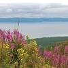 View Hovsgol Lake National Park