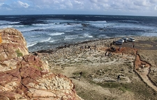 View Inside Cape Point Nature Reserve SA