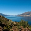 View Lake Wanaka In Otago NZ South Island