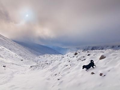 View Larkya Pass - Manaslu - Nepal