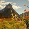 View Mitre Peak @ Milford Sound - Southland NZ