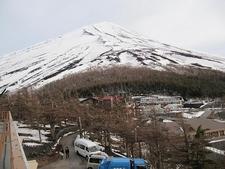 View Mount Fuji In Japan