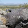 View NM Three Rivers Petroglyphs