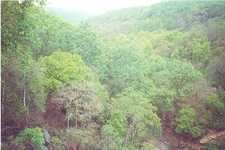 View Of Amarkantak