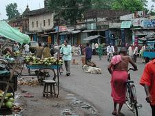 View Of Bhubaneshwar