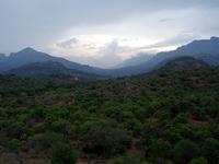 Chinnar Wildlife Sanctuary