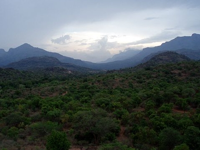 View Of Chinnar Wildlife Sanctuary