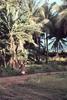 View Of Chuuk