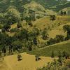 View Of Cordillera Central In Corozal Puerto Rico By Jack Delano