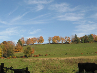 View Of Farm In Richmond