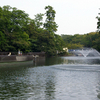 View Of Inokashira Park