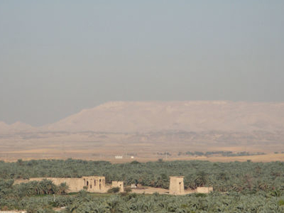 View Of Kharga Oasis With The Temple Of Hibis In The Centre