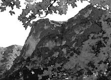 View Of McKittrick Canyon Trail