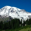 View Of Mount Rainier From Paradise.