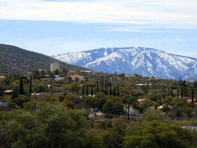 View Of Mt. Lemmon From Oracle