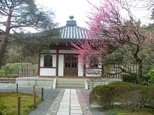 View Of Ryoanji Temple