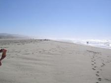 View Of South Ocean Beach