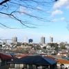 View Of Tokorozawa From Hachikokuyama