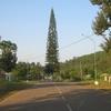 View Of Umrangso
