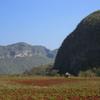 View Of Vinales
