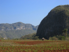 View Of Vinales