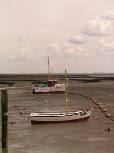 View Of Wadden Sea