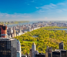 View Over Central Park NY