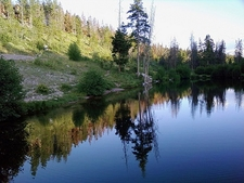 View Pond In High Uintas