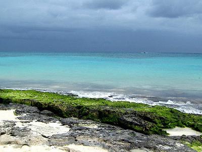 View Quintana Roo Coastline
