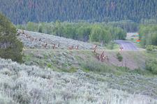 Views From Two Ocean & Emma Matilda Lakes Trail - Grand Tetons - Wyoming - USA