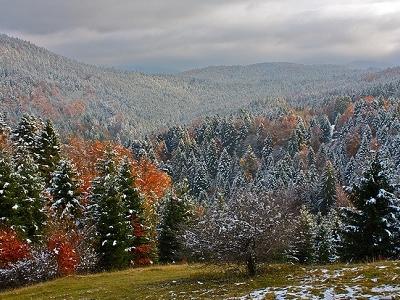 View Sinaiia In Transylvania