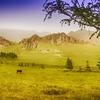 View Terelj National Park