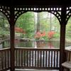 View Toledo Botanical Garden