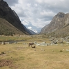 View Valley In Huascaran National Park - Andes Peru
