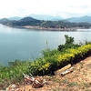 View Victoria Reservoir In Sri Lanka