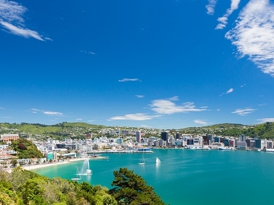 View Wellington With Harbour NZ