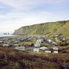 Vik Landscape - Reynisdrangar Backdrop