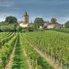 Grands Crus Classes de Graves Wine Tour and Montesquieu's Chateau