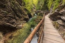 Vintgar Gorge With River