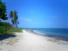 Virginia Key Beach