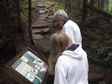 Visitor Info Near Mt. Mitchell Summit NC